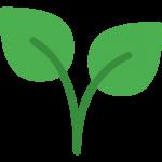 plant-1-150x150